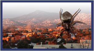 Santa Fe Pest Control